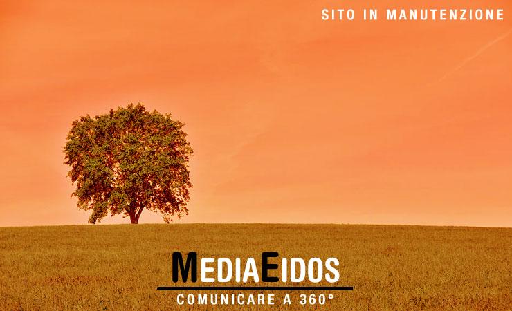 MediaEidos ... comunicare a 360